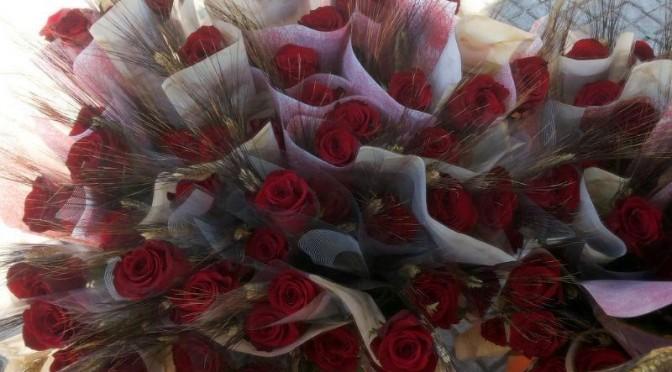 Sant Jordi i Catifa Floral